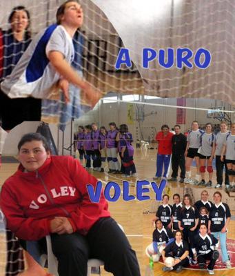 A   PURO   VOLEY
